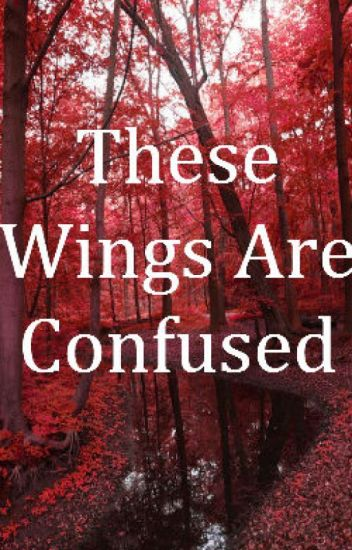 These Wings Are Confused {Sequel to The Angel And The Demon H2ovanoss}