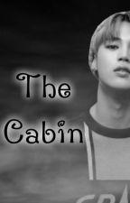 The Cabin [Park Jimin x Reader] by KimSeokJin_Jin