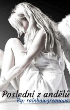 Poslední z andělů by rainbowgreenova
