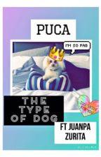 Puca the type of dog «Ft Juanpa Zurita» by pinguino_bailarin