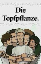 Die Topfpflanze. -Zianourry by KawaiixMeh
