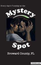 Mystery Spot by gabriel_thearchangel