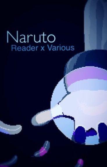 Naruto (Reader x Various)