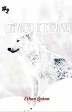 Compañero Determinado (Adaptación)  by Urano_I