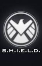 The Beginners Guide to SHIELD by TheAgents_OfSHIELD