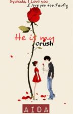 He is my crush ✅ [COMPLETED] by NanaRosey