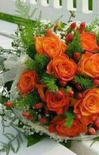 13 Mawar Orange by incrdblkwek