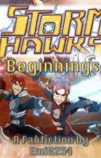 Storm Hawks: Beginnings by Emi8254
