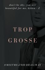 Trop Grosse | Zayn Malik by MALIKIENEMENT