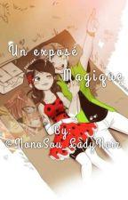Un exposé magique by NonoSou_LadyNoir