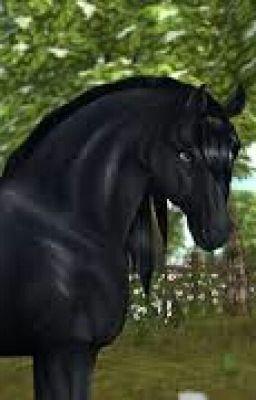 starstable pferdenamen