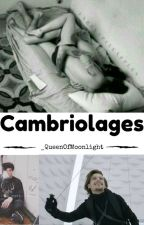 OS Cambriolage [L.S] by _QueenOfMoonlight