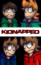 Kidnapped by Flamhero24971