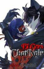 El Otro Chat Noir [Miraculous LadyBug Fanfic] by Alice-Gehabich