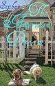 The American Dream (B.F.F. Book 2) by Stjthan