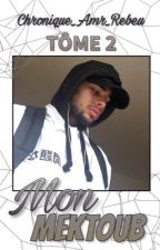 Mon Mektoub : Tôme 2 by chronique_amr_rebeu