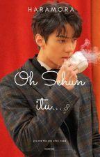 Oh Sehun Itu... by harrajjangg