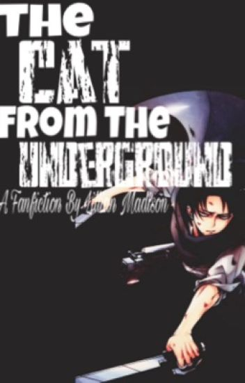 The Cat From The Underground (Levi X Reader)