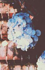 SEVENTEEN • couleur by wildYun