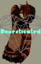 Domesticated (Ticci Toby x Neko! Reader) by The_Ironic_Demon