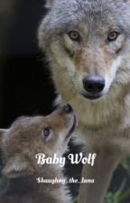 Baby Wolf by shaughny_the_luna