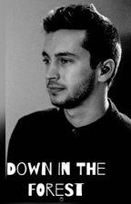 Down in the forest (Twenty One Pilots Fan Fiction) by Panictwentyonetimes