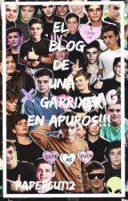 El Blog de una Garrixer en apuros ! by KingGarritsen13