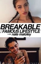 Breakable : Famous Lifestyle → n.m by Magconfanfak