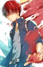 Todoroki New Life Todoroki X Reader by 4567891011a