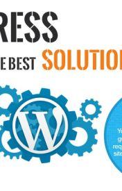 Wordpress Web Development Company & Custom Wordpress Services by riseintechnology