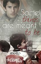 Some things are meant to be by laurs93