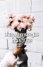 shawn mendes imagines by greymendes