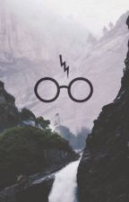 Harry Potter on Facebook by schabowy-