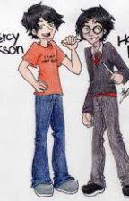 Harry Potters twin- Percy Jackson by Rachel121802