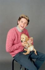 During the Pregnacy and Birth of your Newborn - Niall by Hayleyloves1Dxox