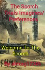 The Scorch Trials Imagines/Preferences  by SubB2WCKD