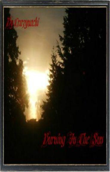 Burning In The Sun boyxboy by crazynachi