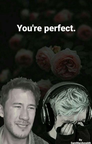 You're Perfect - A Spetiplier Fanfic