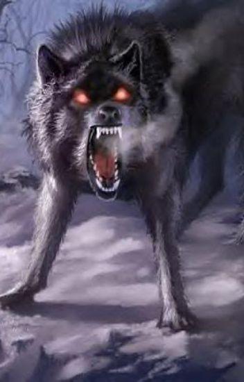 A Dark Wolf's Love: Half Demon Dante x Werewolf Reader