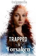 Trapped & Forsaken (HP) {Book 1 of the Wild & Free Series} by twigssmile