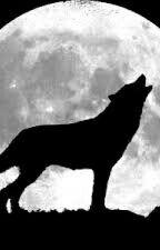 Fangs by ilovewolves1316