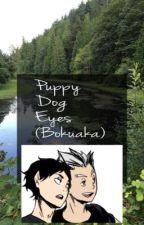 Puppy Dog Eyes ~ Bokuaka one shot  by ttaelian