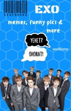 EXO memes, funny pics & more by worldisme