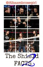 The Shield Facts 2 by albaambrosegirl