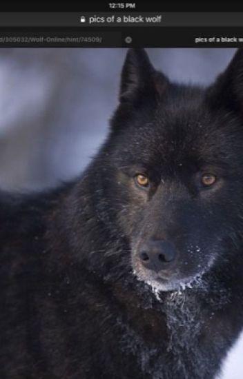 True alpha wolf
