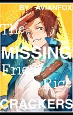 The Missing Fried Rice Crackeres -DISCONTINUED- by introvertedbox