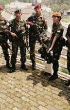 Infanteri Raider 71 / 1 KOSTRAD by CarmelitoMichael