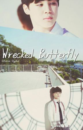 Wrecked Butterfly by FreiyaSand