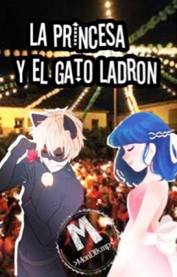 La Princesa y el Gato Ladron