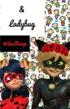 Adrien Y Marinette Whatssap(Chat Noir Y Ladybug) by EndOfTheDay12